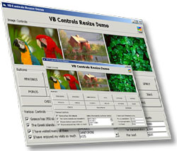 Click to view ActiveResize Control 3.3 screenshot